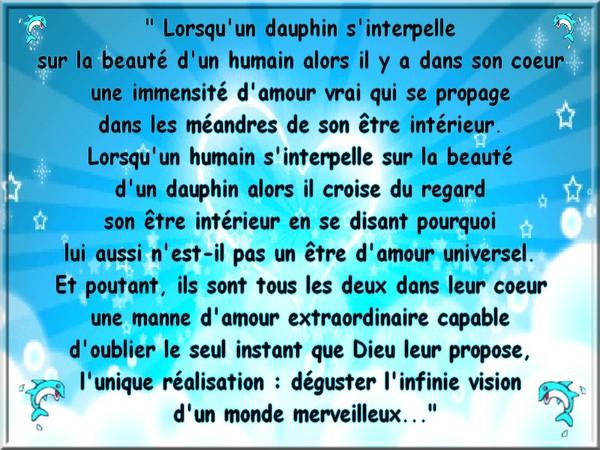 La parole du mage - Philippe Hodard