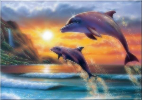 3 dauphins en fond d cran magnifique pour vous centerblog. Black Bedroom Furniture Sets. Home Design Ideas