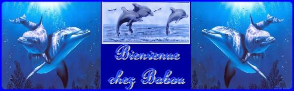 message pour BABOU