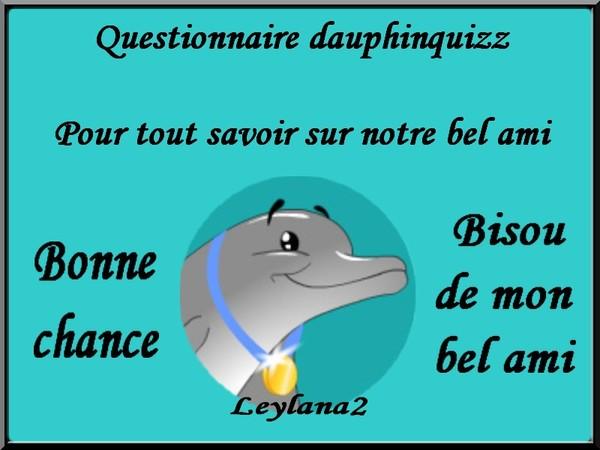 Dauphinquizz Questionnaire Pour Tout Savoir