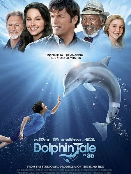 dolphins tale