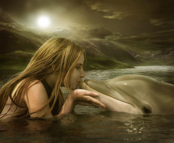 Vidéo : sauvetage de dauphins échoués