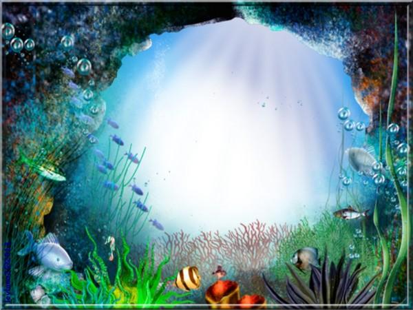Aquarium en fond d 39 cran pour vous for Fond ecran aquarium