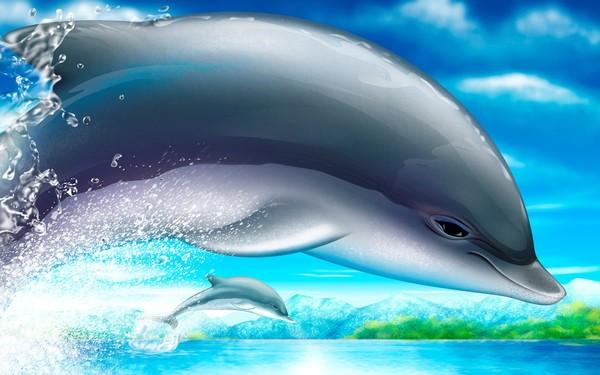 8 dauphins en fond d cran magnifique pour vous centerblog. Black Bedroom Furniture Sets. Home Design Ideas