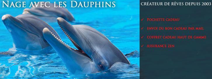 Nager avec les dauphins vous en r ver c 39 est possible for Nager avec les dauphins nice