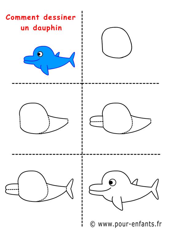 Comment Dessiner Un Dauphin