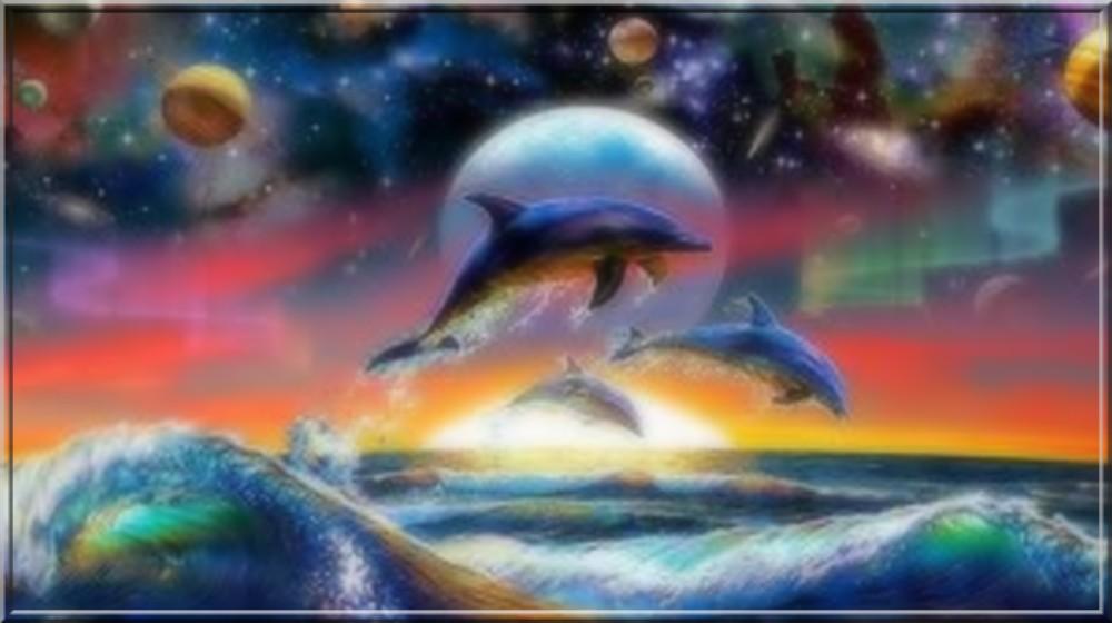 dauphins en fond d 39 ecran magnifique trouv sur le net. Black Bedroom Furniture Sets. Home Design Ideas